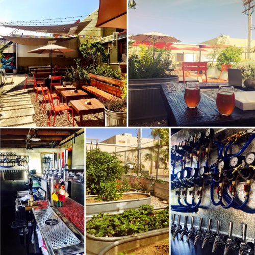 ChuckAlek Biergarten & brewery in North Park, with food from neighboring Tostadas